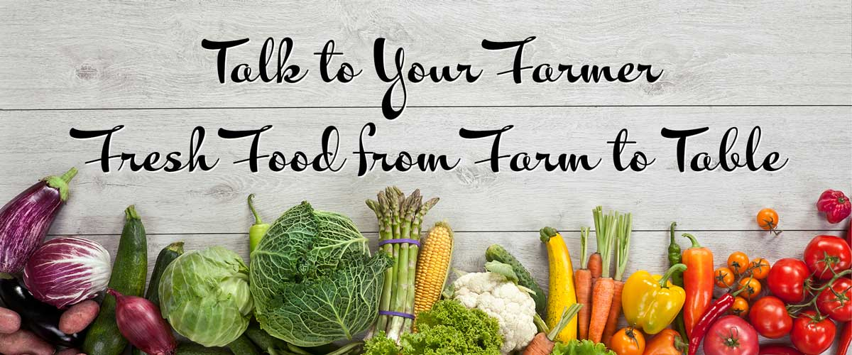 Talk to Your Farmer, Fresh Food from Farm to Table