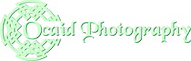Artists, Photographers & Graphics:  John McHugh – Ocaid Photography