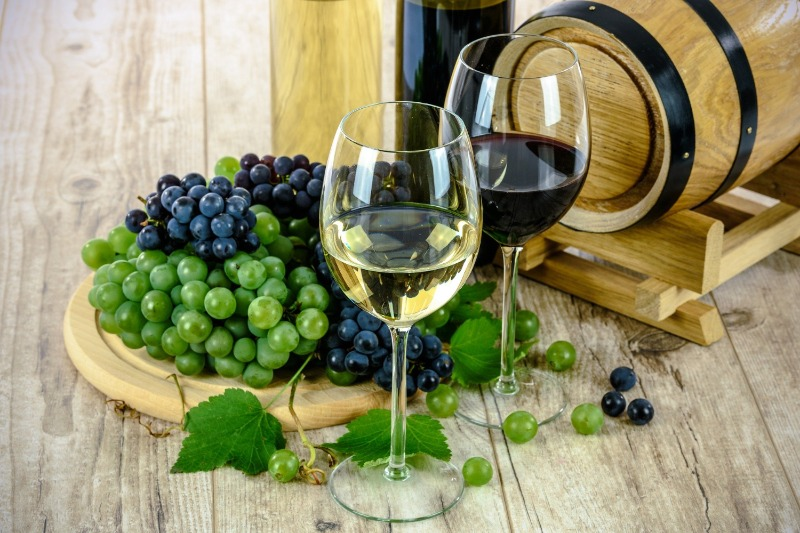 WINES: What Can Tasting Wine Teach Us about Life?