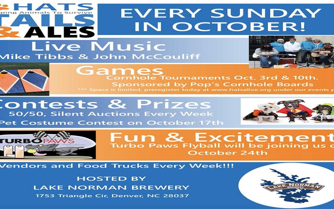 Things to Do: – Oct.10, 2021 -Sunday Funday in Denver, NC